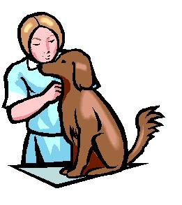 Vet Cartoon clipart Veterinary Tools Clip Art