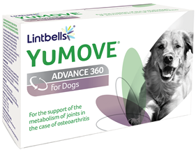 Best Supplement For Dogs Joints Uk