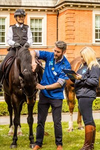 The Metropolitan Police Mounted Branch (Hyde Park) has joined forces with the Blue Cross to launch the charity's National Equine Health Survey, taking place this week.