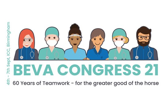 BEVA Congress returns to Birmingham in September