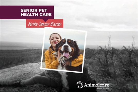 New campaign to help vet practices support owners of older pets