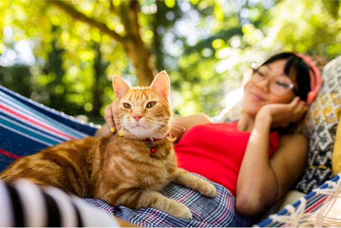 MSD Animal Health has announced that Bravecto Plus has been given a new licence to treat Otodectes Cynotis (ear mites) in cats.