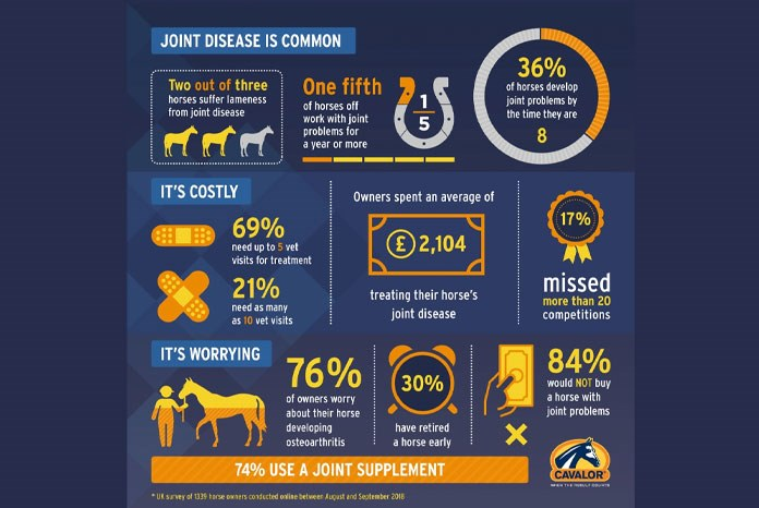A new survey of horse owners¹ by supplement brand, Cavalor
