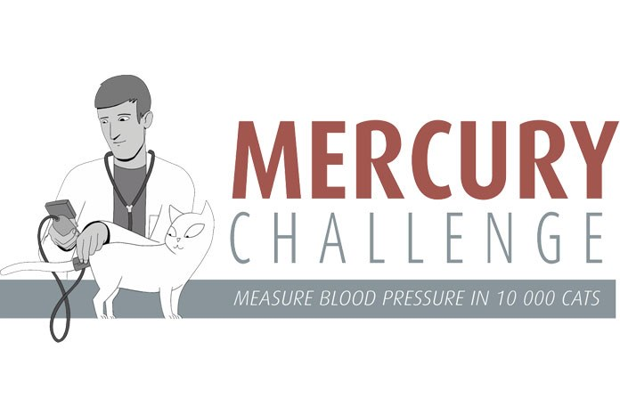 Veterinary nurses are being asked to take blood pressure readings from cats over seven years of age and submit them to The Mercury Challenge, Europe's largest study into feline hypertension.