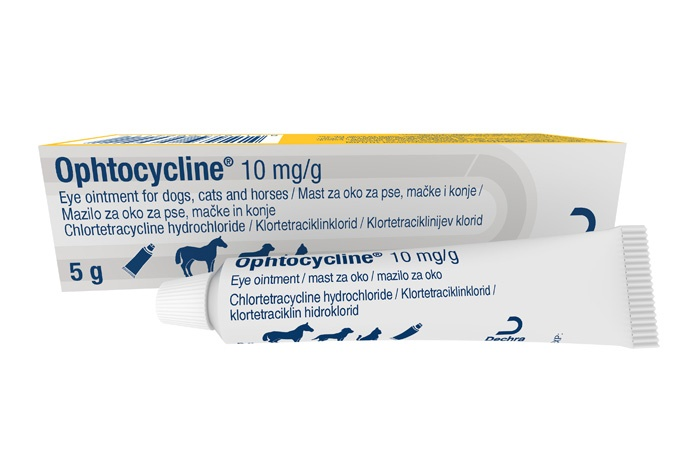 Dechra Veterinary Products has launched Ophtocycline (chlortetracycline hydrochloride), a broad spectrum ophthalmic antibiotic ointment for the treatment of a number of eye infections in dogs, cats and horses.