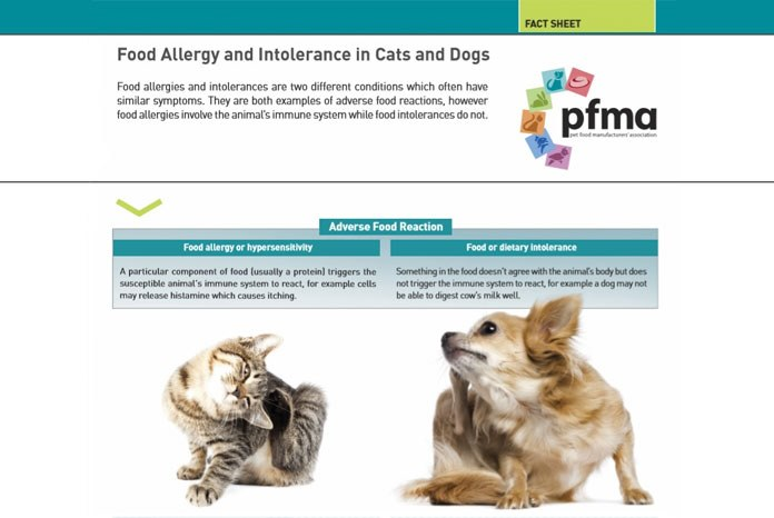 The Pet Food Manufacturers Association (PFMA) has published two new factsheets for pet owners, one about vegetarian diets and the other about food allergies.