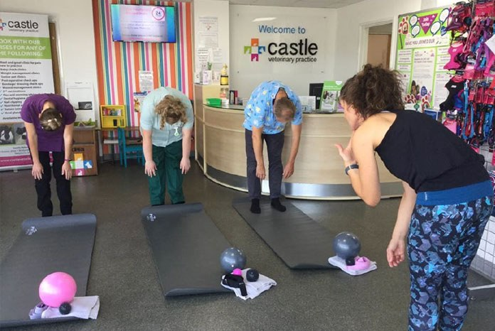 Veterinary nurse and ex practice owner Kate Bartels has launched Practice Pilates, offering pilates sessions for veterinary teams, to help both their physical and mental wellbeing.