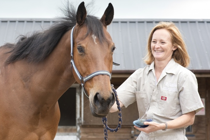 Professor Sarah Freeman, will be talking about her pioneering public awareness project on equine colic