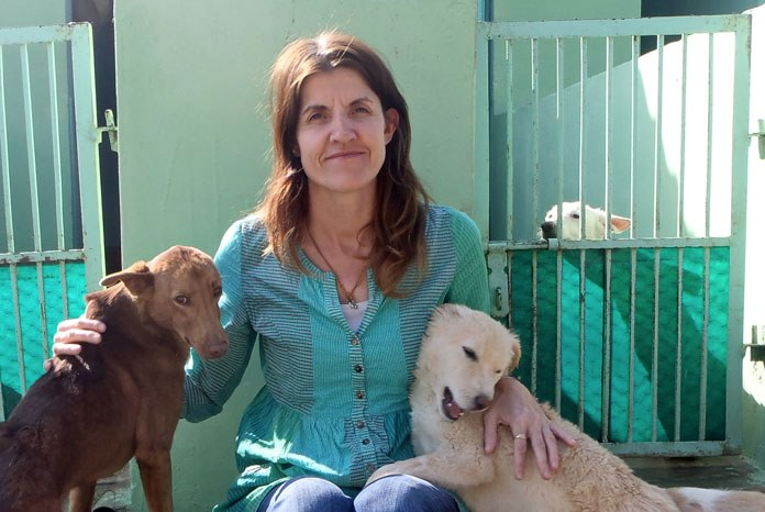 Tree of Life For Animals, a charity set up by veterinary nurse Rachel Wright, has been announced as one of five finalists for this year's Animal Star Awards.