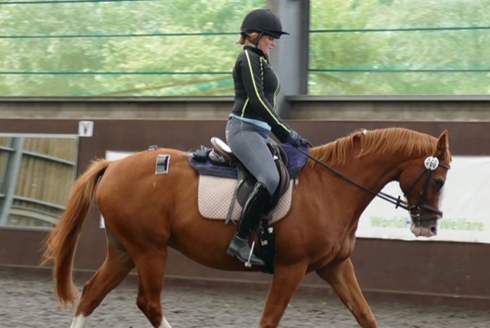 A new pilot study on the effects of rider weight on equine performance, presented at the National Equine Forum this week, has shown that high rider: horse bodyweight ratios can induce temporary lameness and discomfort.