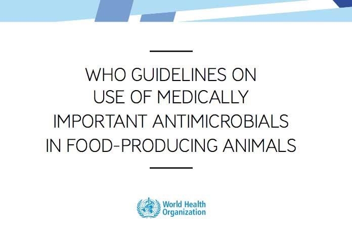 The World Health Organisation (WHO) has issued new guidelines concerning the use of medically-important antimicrobials in food-producing animals, which have been welcomed by the British Veterinary Association.