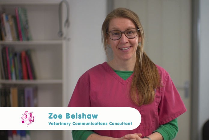 Elanco Animal Health, maker of Onsior, has created a new film in collaboration with Zoe Belshaw, an RCVS and European recognised internal medicine specialist, which offers tips to help engage owners on the subject of OA in their pet.